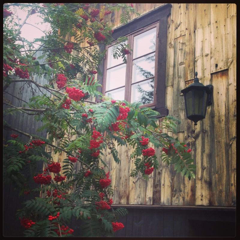 Høsten er på vei. Her fra Vertshuset på Røros.